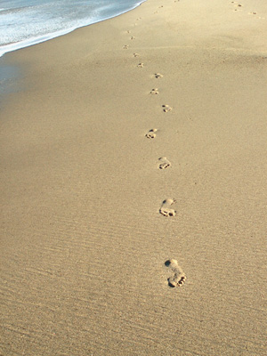 Footprints Tom